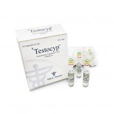 Testocyp Testi Cyp 250mg / ml 10 x 1ml amp - Alfa-Pharma
