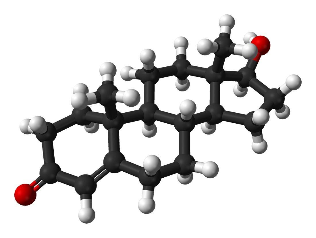 Molécule testosterone